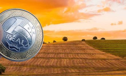 Cai oferta de Títulos da Dívida Agrária para pagamento do Imposto Territorial Rural
