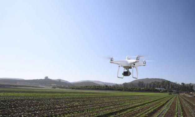 Drone da DJI agiliza avaliações de dados em colheitas na França