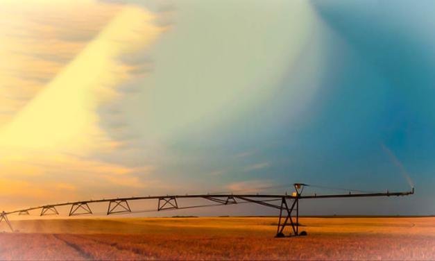 Brasil avança em tecnologia de irrigação de precisão com uso de Internet das Coisas
