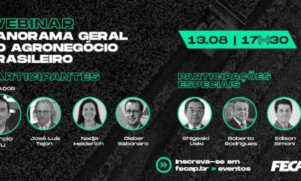 Webinar debate o agronegócio brasileiro