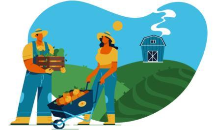 Startups auxiliam produtores de hortifrúti durante a quarentena
