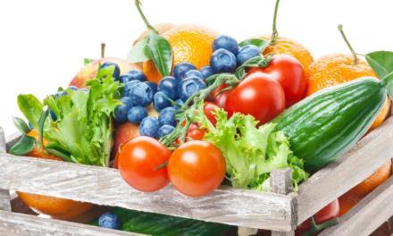 A importante gestão de fornecedores na cadeia de hortifruti