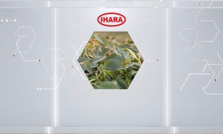 Circuito Digital IHARA democratiza o conteúdo digital e leva informação para agricultores de mais de 10 diferentes cultivos