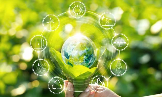 Cinco maneiras de usar a tecnologia para tornar o agronegócio mais sustentável