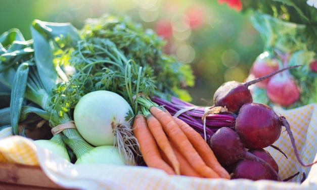 Europa aumenta importação de produtos agroalimentares orgânicos