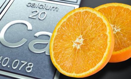 Falta de cálcio na lavoura de citros pode inviabilizar a rentabilidade do citricultor