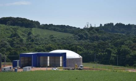 Bem-estar animal e produção de biogás reforçam cuidados de produtores com meio ambiente