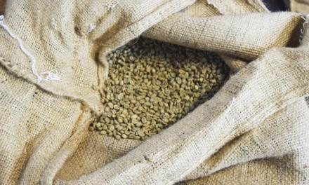Brasil exporta 3 milhões de sacas de café em julho