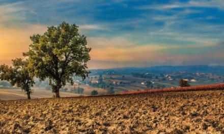 Conexão Agroclima: os desafios da safra 2020/2021