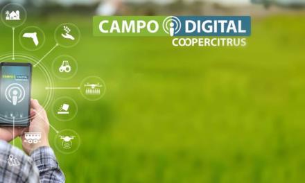 Coopercitrus Campo Digital: Soluções da agricultura 4.0 na palma da mão