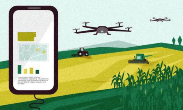 Pandemia acelera transformação digital no campo