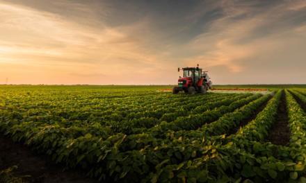 Veja números do agronegócio, motor do desenvolvimento do Brasil
