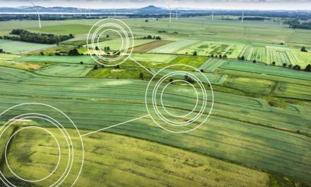 PESQUISA AGRO: Inteligência Artificial, Machine Learning e Big Data terão maior impacto nas previsões de demanda e gestão de estoques no setor