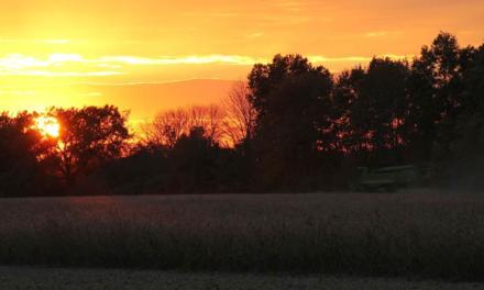Pagamento por Serviços Ambientais pode unir Agronegócio, Ambientalistas e Governo em torno de um mesmo propósito