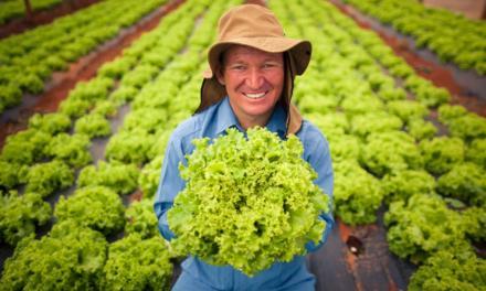 Comunicação do agro com a sociedade urbana ganha cada vez mais força