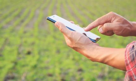 Plataforma da Agrofy registra aumento de 60%  no número de visitantes durante 1ª Feira Online