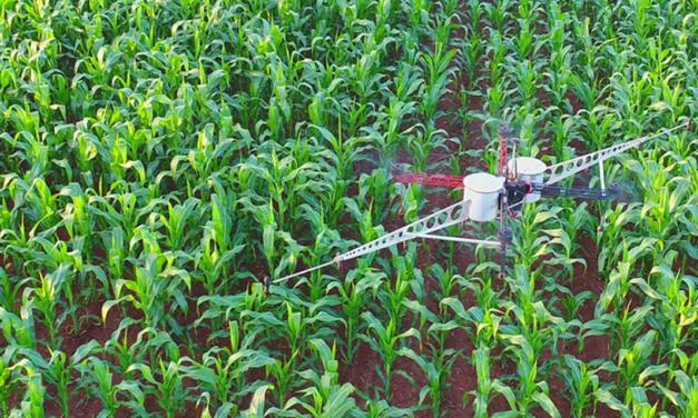 Startup brasileira de tecnologia para serviços agrícolas inicia operação de drones nos Estados Unidos