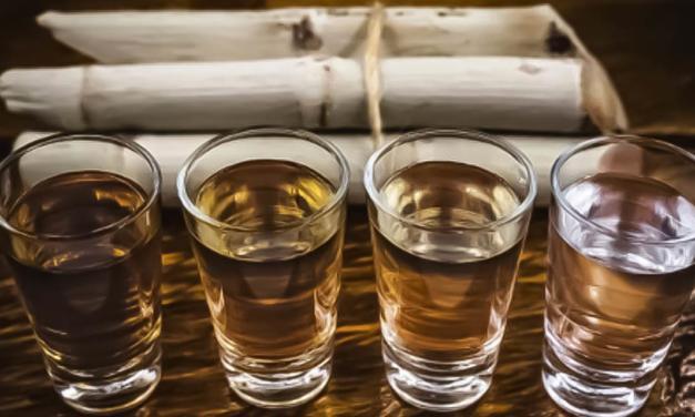 Dia Nacional da Cachaça: uma ótima data para começar a empreender no destilado