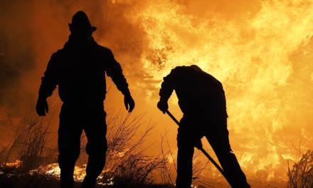 BP Bunge Bioenergia investe em equipes treinadas, tecnologia e equipamentos para prevenir incêndios