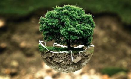 Como a indústria pode ter uma postura proativa na conservação e restauração do meio ambiente?