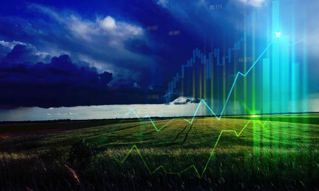 Valor da Produção Agropecuária deste ano é atualizado