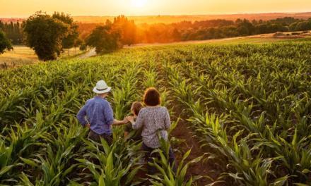 Nova prorrogação do vencimento das DAPs auxiliará milhares de agricultores familiares e outras categorias produtivas