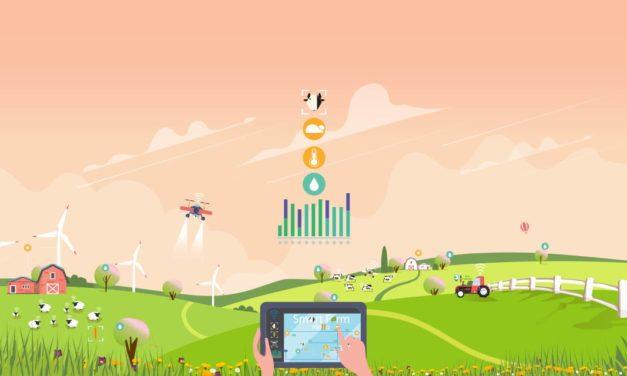 Mapa fecha acordo de cooperação para inovação no Agro