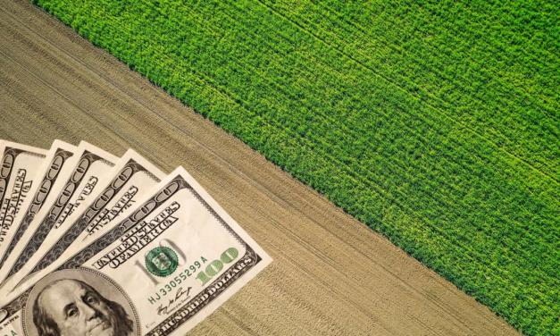 Comércio exterior do agronegócio brasileiro