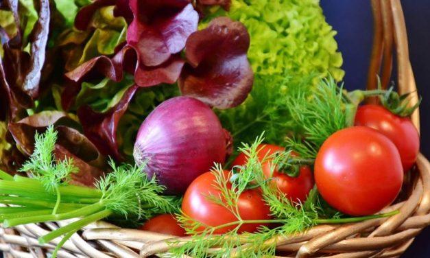 Produção diversificada de hortaliças garante renda ao produtor rural e nutrição ao consumidor