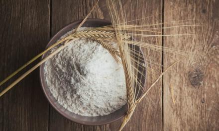 NOTA OFICIAL – Cultivo e utilização de trigo e farinha geneticamente modificado (trigo GM) pelo Brasil