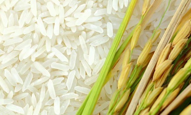 Preço do arroz sobe 65% em um ano e encabeça inflação da cesta da pandemia da FecomercioSP