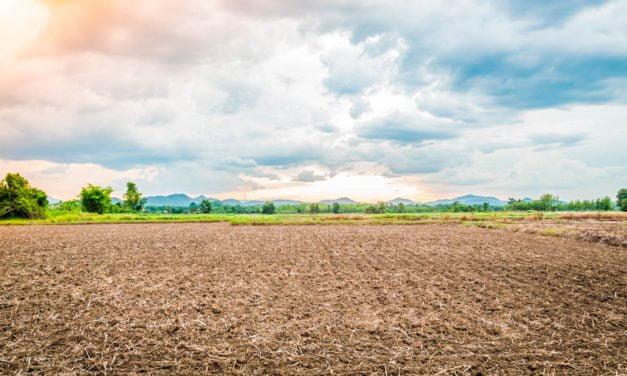 Seu solo está preparado para enfrentar desafios climáticos?