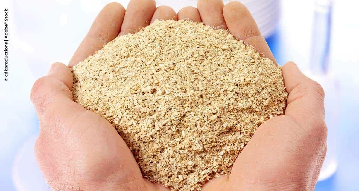 Nova norma sobre farelo de soja para exportação impulsiona demanda de inspeções