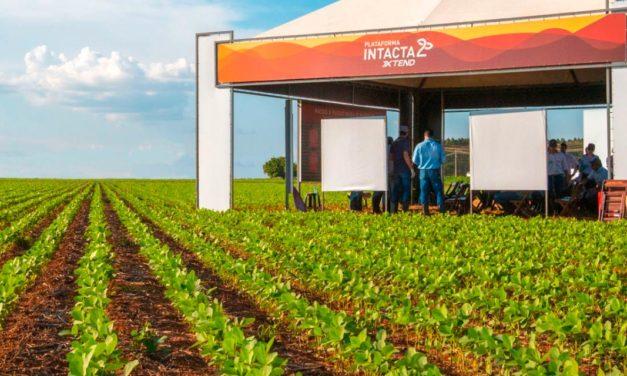 Agroeste apresenta variedades de soja com tecnologia Intacta 2 Xtend®