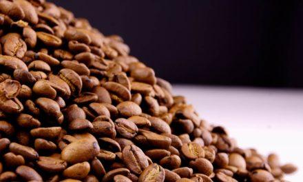 Novo recorde histórico para o mês: exportações de café brasileiro atingem 4,3 milhões de sacas em novembro