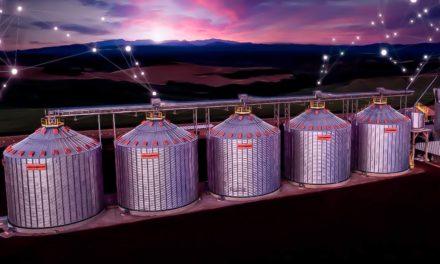 Tecnologia 4.0 na armazenagem traz mais ganhos ao produtor de grãos