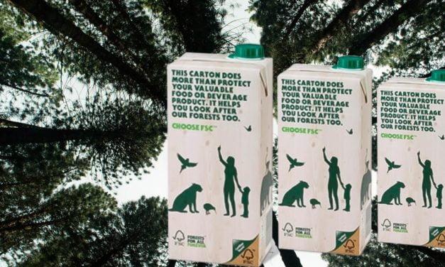 SIG assegura papel cartão 100% certificado FSC® em apoio ao manejo florestal responsável