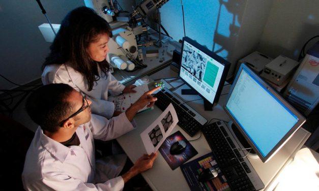 A integração entre Bionat, Kimberlit e Loyder promove o desenvolvimento do Vanguard Team