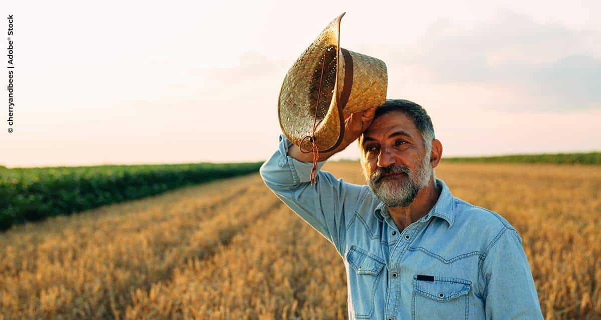 Descumprimento de norma sobre exposição ao calor pode render multa a produtor rural