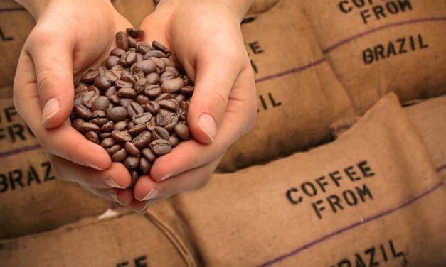 Brasil exporta 44,5 milhões de sacas de café em 2020 e  bate novo recorde histórico