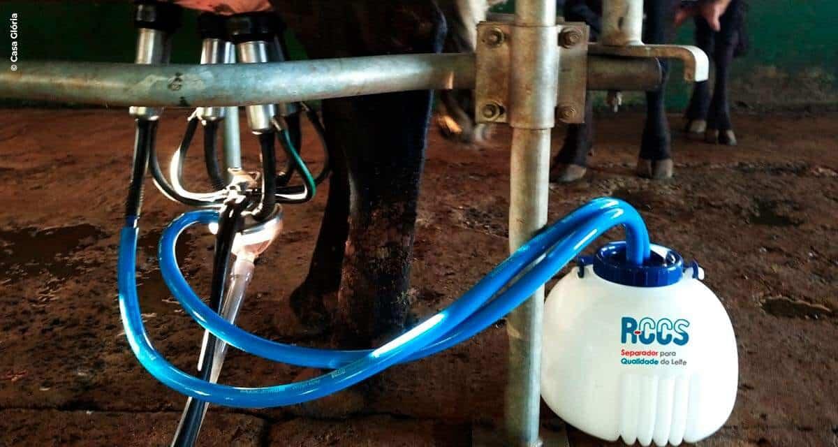 Casa Glória traz ao mercado novidade em equipamento para vacas leiteiras