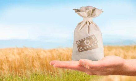Valor da Produção Agropecuária de 2020 ultrapassa R$ 871 bi