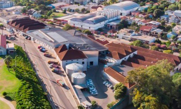 Cooperativa Vinícola Garibaldi comemora 90 anos com programação virtual