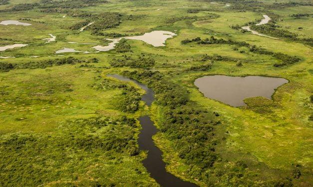 Pacto para Proteção das Cabeceiras do Pantanal completa dois anos de parceria com SLC Agrícola