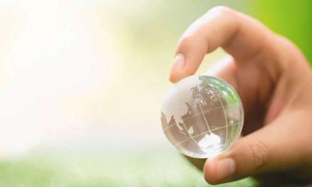 Sustentabilidade na prática, a Iniciativa Carbono Bayer