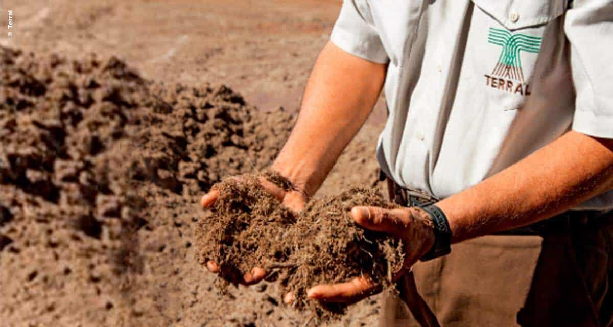 Grupo Terral Agro investe em Projeto SAP para entrar no varejo com cortes especiais de carnes e água de coco