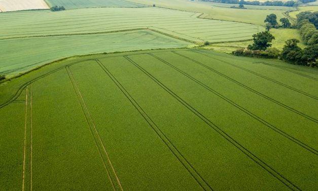 Mais de 53 milhões de reais antecipados no agronegócio e aporte de 2 milhões de dólares em 2020