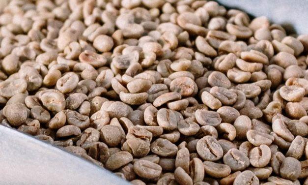 Exportações de café do Brasil atingem 3,1 milhões de sacas em janeiro