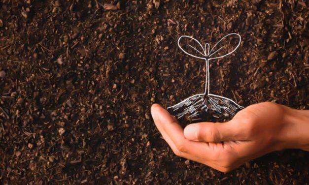 Índice de Confiança do Agronegócio encerra 2020 em patamar otimista e registra  121,4 pontos
