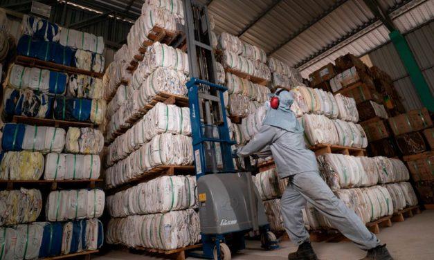 Sistema Campo Limpo supera 600 mil toneladas de embalagens vazias de defensivos agrícolas destinadas corretamente desde 2002